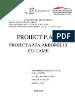 Proiect Pac