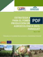 Estrategia Paraguay - 2008