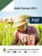LIFT_HH_Survey_2013.pdf