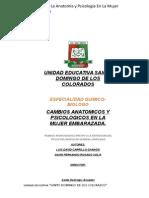 Monografia Cambios Anatomicos y Psicologicos en La