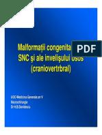 Curs 8 Malformatii Congenitale