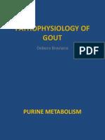 Pathophysiology of Gout