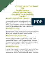 Programa Análisis Matemático