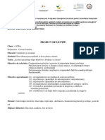 proiect dirigentieCOROIU.pdf