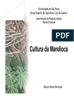 Apostila Slides Mandioca 2011