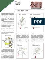 01lowback.pdf