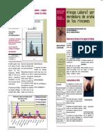 Araña Rincón -Trabajo.pdf