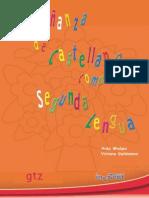 Enseñanza de Lengua Castellana Como Segunda Lengua, Cgeib