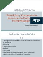 Principios y Componentes Básicos de La Evaluación Psicopedagógica