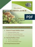 Budidaya Jamur Tiram Sip