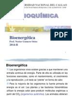 Clase 04 Bioenergetica