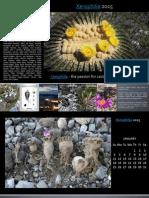Xerophilia Calendar 2015 - 1