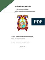 Universidad Andina Examen Laboratorio de Algoritmia