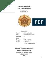 95814362-Laporan-Praktikum-umbi-Umbian.pdf