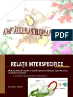 Adaptari La Polebnizare - Curs Fizio Plante
