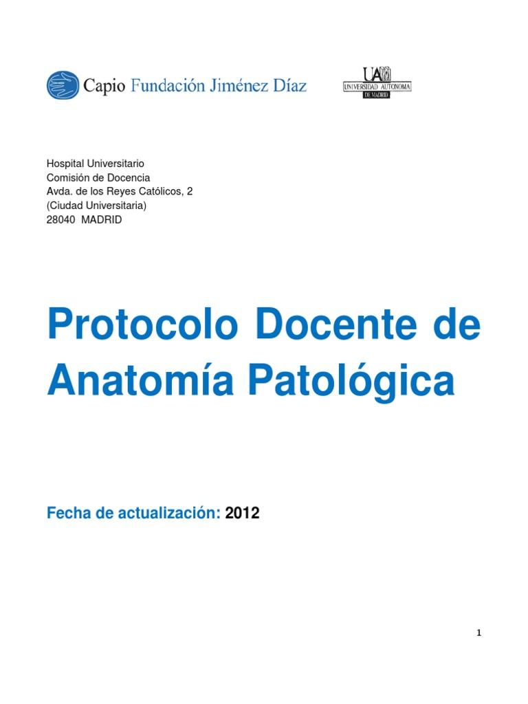 Único Grises Anatomía Del Hospital Inspiración - Anatomía de Las ...