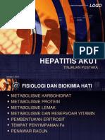 Hepatitis Pustaka