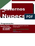 Cartaz Seminário Externo