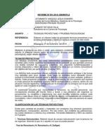 Informe_YNTUSCA.docx