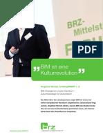 BIM-Strategie bei unseren Nachbarn – Zukunftsstrategie für Deutschland?