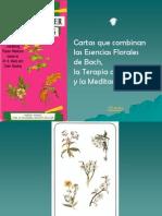 flores-de-bach-cartas-1222900092179877-9