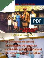 Cultura y Socialización