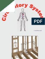 circulatory system notes 2 0