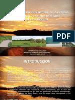 Balance Biomasa Sistema Hidrico Pulso en la Orinoquia