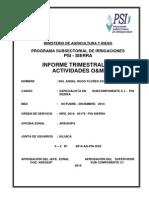 INFORME  TRIMESTRAL  Octubre - Diciembre  2014 O&M - C1.docx