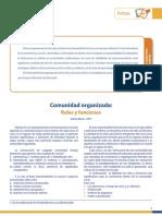 Comunidad Organizada Roles y Funciones Prof. Jefe