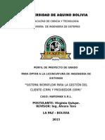 151778646-Proyecto-Virginia-V1.doc