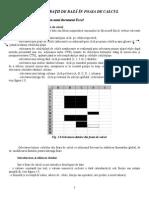 Excel1-Operatii de Baza in Foaia de Calcul PT Mama