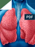 F.respiratoria. Resumen.