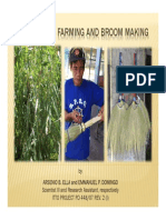 Tiger Grass Farming and Broom Making [Compatibility Mode].pdf