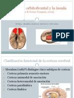 La Corteza Orbitofrontal y La Ínsula