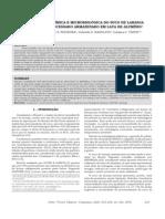 ANÁLISE FÍSICO-QUÍMICA E MICROBIOLÓGICA DO SUCO DE LARANJA.pdf