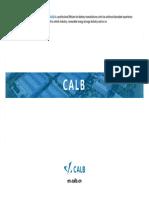 CALB Presentation