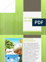 Eco Sistem as de Morelos