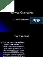 nervios-craneales-20454