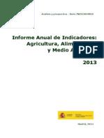 Ayp Informe Anual de Indicadores 2013