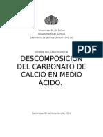 Descomposición Del Carbonato de Calcio en Medio Ácido Informe 8