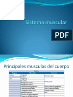 Sistema muscularParte2 (1).ppsx