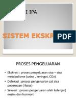 Ppt Sistem Ekskresi