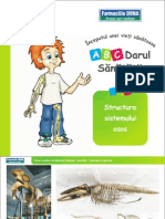 Lectia-3-Structura-sistemului-osos.pdf