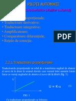 Elemente Caracteristice Pilotilor