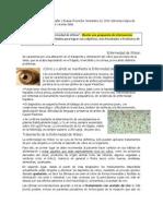 Ejercicio de Completar Matriz de Proyectos de Investigación e Intervención