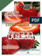 Proyecto Exportación de Fresa