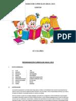 Programacion Curricular Anual 2015