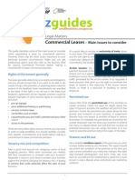 Bizguide Commercial Leases Main Issues to Consider