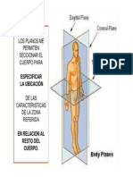 Biomecanica Examen Postural